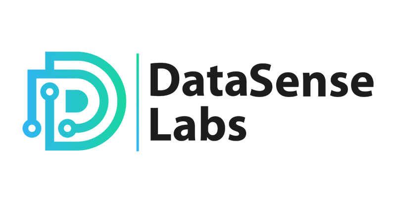 DataSense Labs